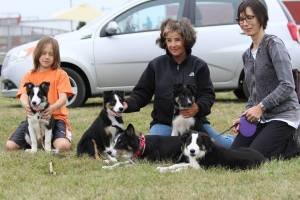 Peach and 4 of her pups.  Pat, Jo, Donner and Arlo