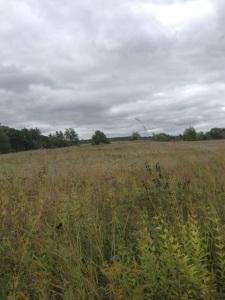 Kettle Morraine Landscape